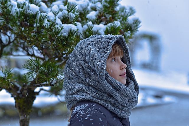 ブログに雪を降らせる
