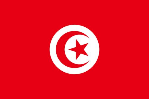 チュニジア戦