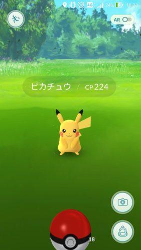 旧新宿門まできたら、ピカチュウ出たよ!