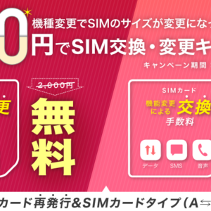 IIJmioのSIMサイズを変更!春のSIM交換・変更0円キャンペーン中です!
