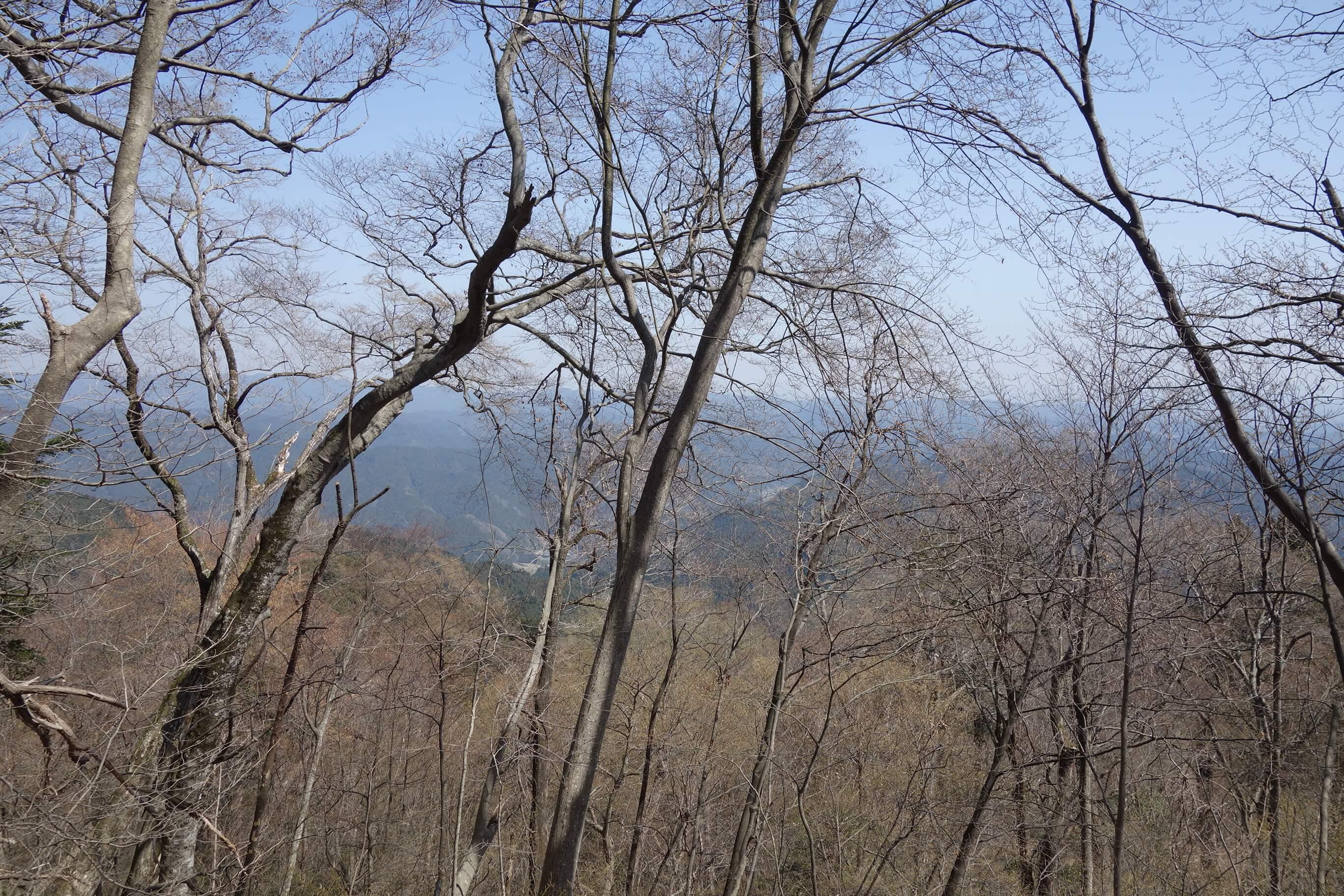 斜面を登っていくと高水山(標高759m)に到着です