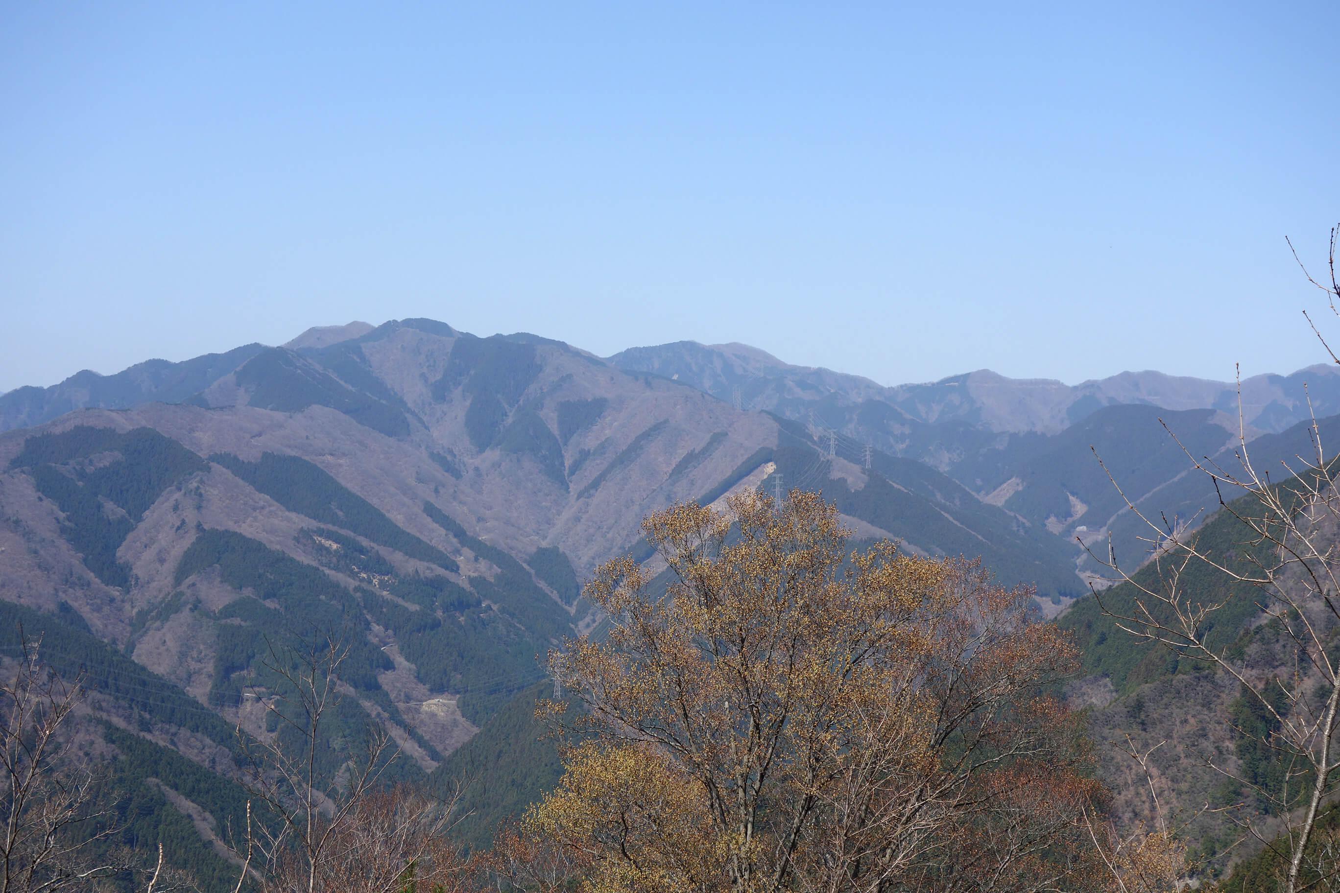 [奥多摩] 高水三山に日帰り登山