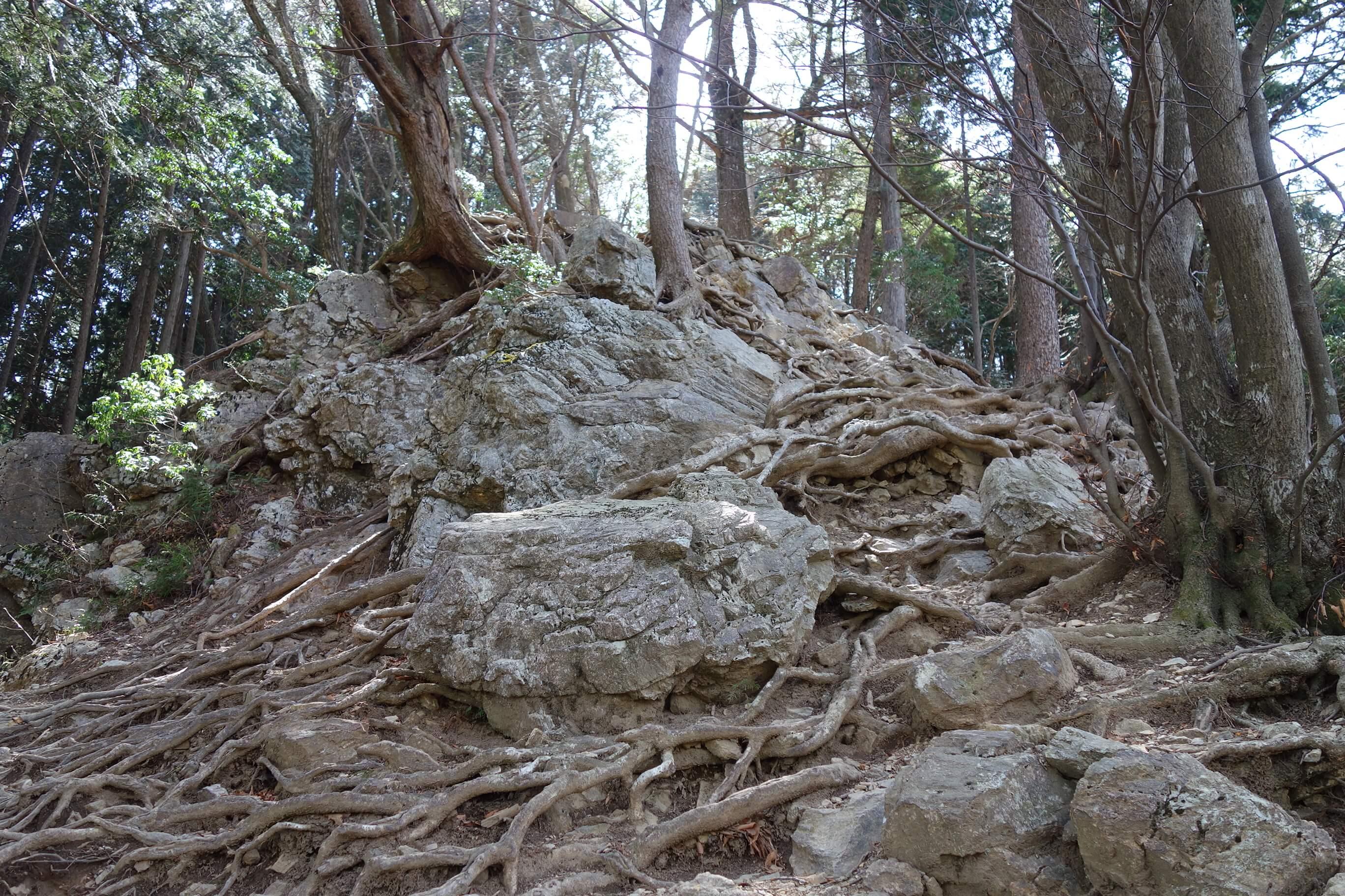 頂上へ岩場があるのでよじ登ろう